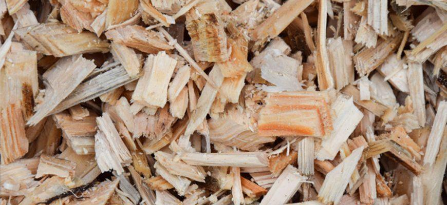 obrabotka drevesinnogo othoda